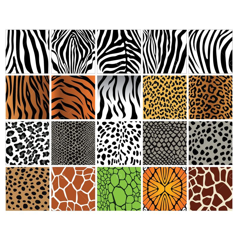 Free Set Of Animal Print Backgrounds Graphic Vector Stock By Pixlr