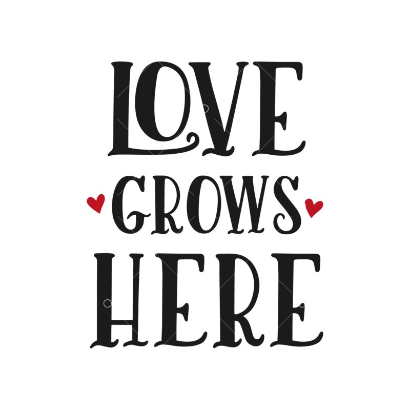 Love Grows Here Graphic Vector Stock By Pixlr