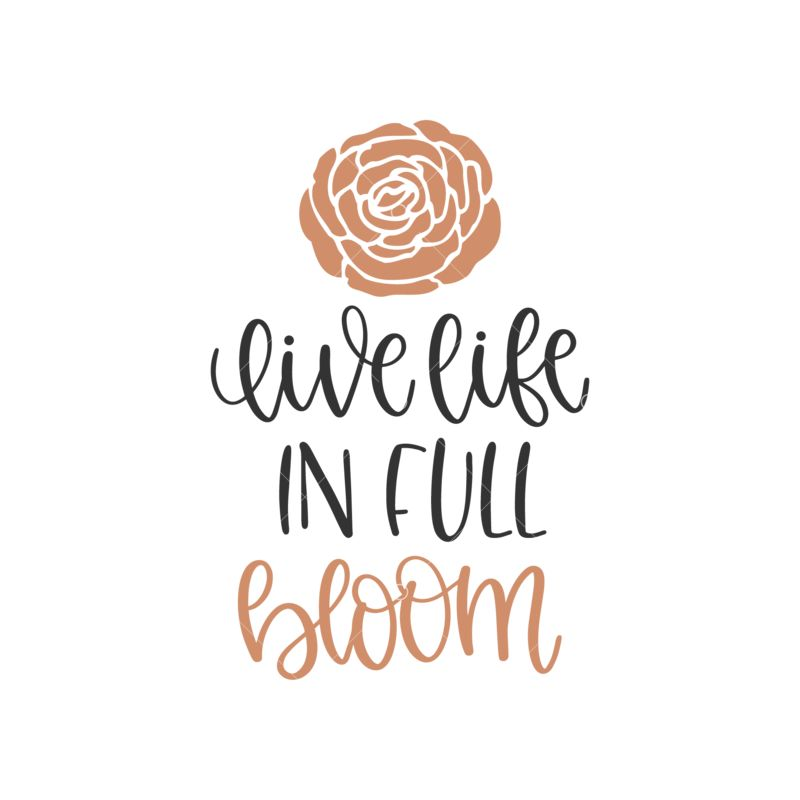 Live Life In Full Bloom Graphic Vector Stock By Pixlr