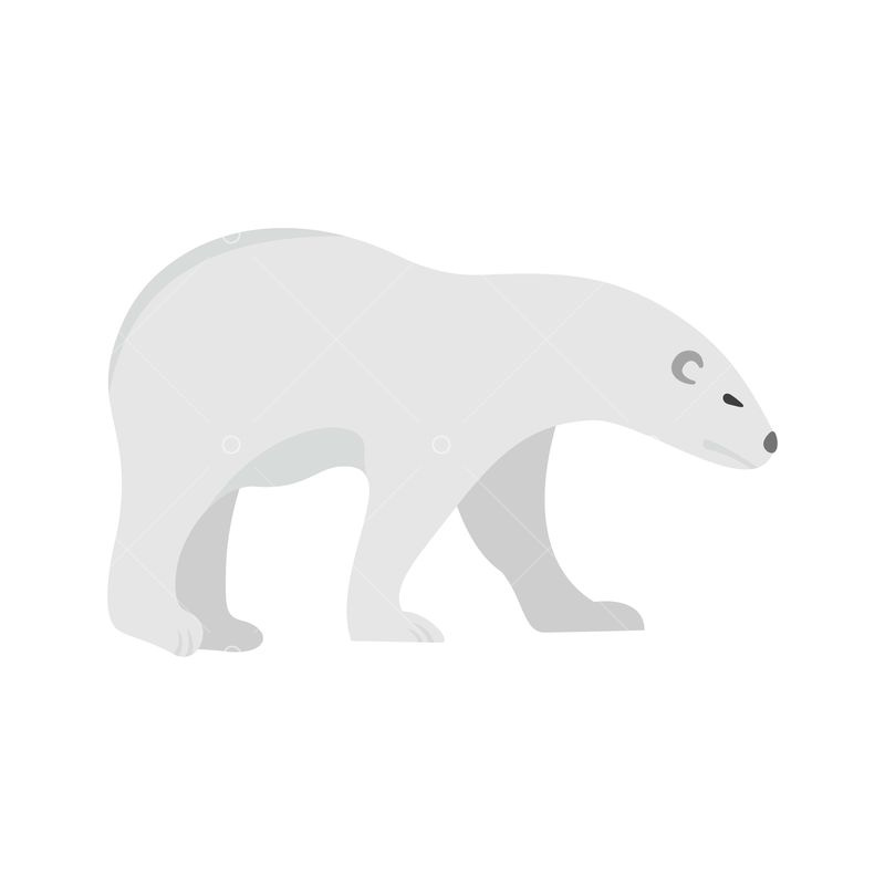 walk of polar bear icon flat illustration of walk of polar bear vector icon for web isolated on white graphic vector stock by pixlr polar bear icon flat illustration