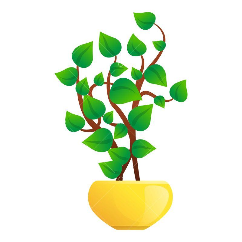 Leaf Tree Pot Icon Cartoon Of Leaf Tree Pot Icon For Web Design Isolated On White Background Image Stock By Pixlr Free cartoon tree icon with simple design. leaf tree pot icon cartoon of leaf